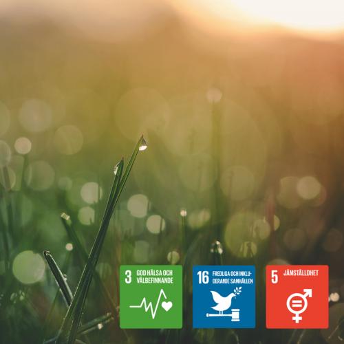 Leder bättre hälsa och jämställdhet till fredliga samhällen?  Medverkande Tarja Halonen, tidigare president Finland Margot Wallström, tidigare utrikesminister Sverige